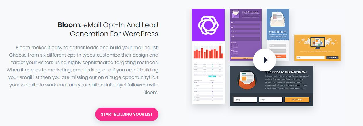 Plugin Divi site No Limits_Bloom